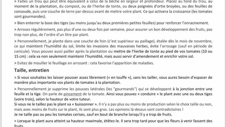 Plantation et entretien des tomates par Christian notre président de A L'ASSAUT